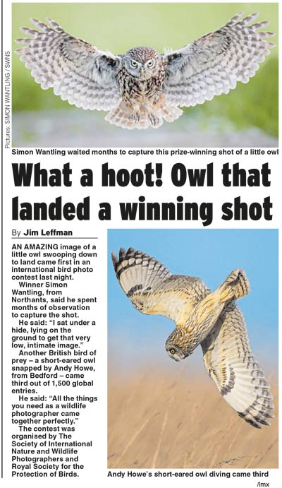 Daily Express - SINWP 2018 Bird Photographer of the Year